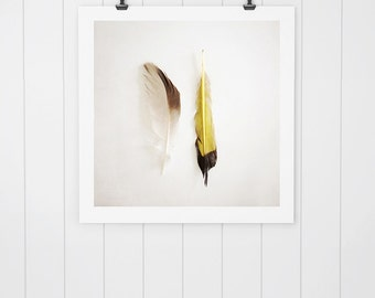 Modern Farmhouse Decor Feather photo, feather art, nature photo, rustic wall art, nature print, yellow feather, feather photography