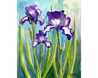 Iris print watercolor Painting  Landscape Floral flowers purple  flower  Giclee Reproduction VARIOUS SIZES