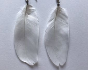 White Duck Feather Earrings