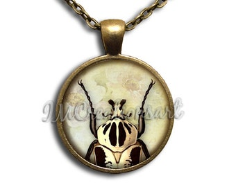 Bug Lover Insect Glass Dome Pendant or with Chain Link Necklace AN167