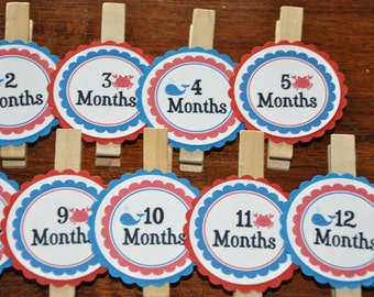 Whale. Crab. Photo Clips. Nautical. Ocean. First Birthday. Photo Clips. Set of 13. Newborn-12 Months. Create photo banner