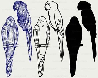 Parrot svg/parrot clipart/bird svg/parrot silhouette/parrot cricut/parrot cut files/parrot clip art/digital download/designs/svg
