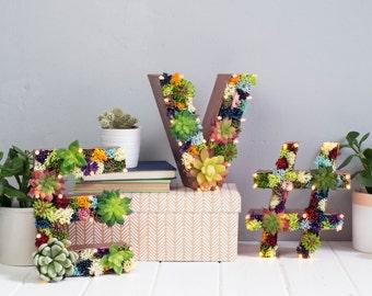 Artificial Succulent letter - light up letter - floral letter - flower letters