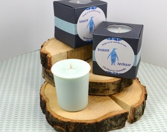Instant Arctic - candle Votive scent Penguin - Animal spiritual - Penguin - natural wax