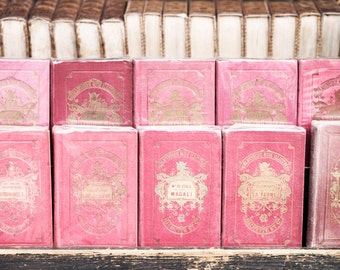 Paris Photography - Pink Books, Bibliotheque Rose, France Travel Photograph, Large Wall Art, French Home Decor