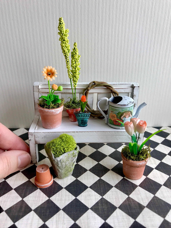 Miniature Garden Plants Dollhouse Garden Bench Watering Can