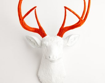 Faux Taxidermy - The Adelaide - White W/ Orange Antlers Resin Deer Head Mount - Stag Resin by White Faux Taxidermy Animal Wall Decor
