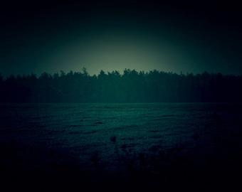 Dark Photography, Nature Photography, Wall Art Print, Landscape Photography, Emerald Green, Dark Teal Photo