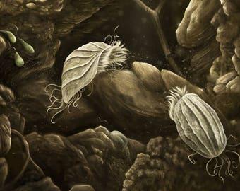 Soil Protozoa Illustration