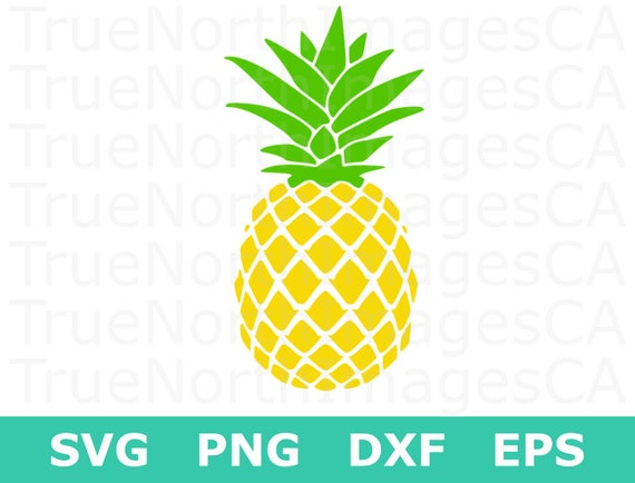 pineapple svg pineapple clipart pineapple silhouette pineapple rh etsystudio com pineapple clip art free pineapple clip art outline