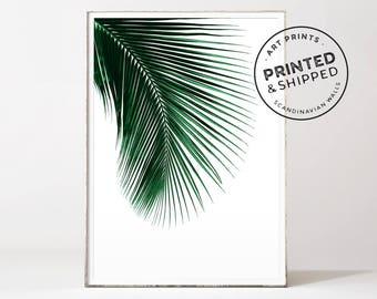 Palm leaf print, palm print, leaf prints, botanical print, botanical art, palm leaf, palm tree print, palm leaves, palm poster, leaf print