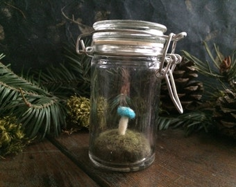 Amanita mushroom terrarium, Bright Turquoise, a felted wool garden in glass jar, glass terrarium, felt moss terrarium, mushroom hunter gift