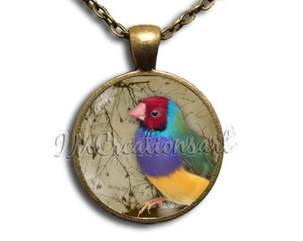 Colorful Finch Glass Dome Pendant or with Chain Link Necklace