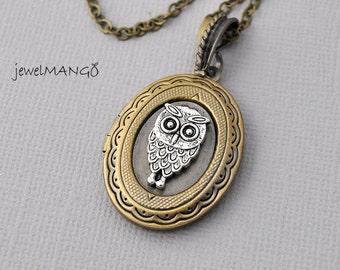Owl Locket Necklace, Oval Locket, Photo Locket Necklace, Vintage Inspired Lovely locket, mixed metal, cute Owl on locket, long necklace