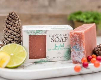 Holiday Soap - Holiday Decor - Cranberry Soap - Bar Soap - Fall Scents - Holiday Guest Soap - Home Decorating -Christmas Soap - Powder Room