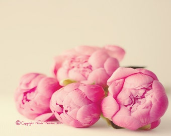 peony stilllife photo print - whimsical fine art nature photography, flower photo, home decor, wall art, gifts for her, pretty photo