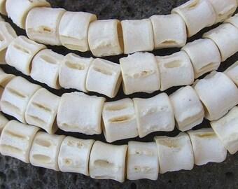 Fish vertebrae - size L - FV03