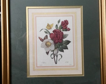 ELEGANT and FRAMED,  PRINT of painting by P. J. Redoute.