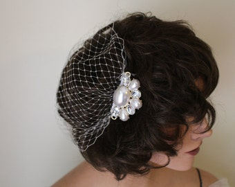 Off-White Full Face Bandeau Birdcage Veil and Ornamental Combs with Pearls and Gems