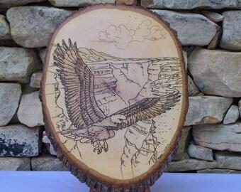 American Bald Eagle Woodburning Pyrography