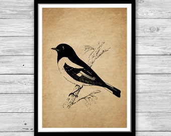 Black Bird Print Art Old Paper Room Decor Bird Wall Art Vintage Style Bird  Antique Decoration Textured Paper Or Canvas Many Sizes DIA07