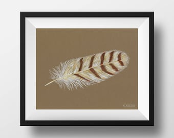 Snowy Owl Feather 2018
