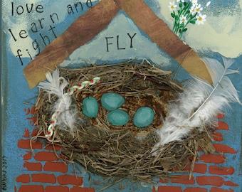 Birds nest print, brick house print, Robin's egg nest, mixed media birds nest, home inspirational words, white daisys, 11 X 11,
