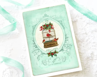 Vintage bird cage, Christmas card, 4th day of Christmas, robin, holly, mistletoe, red berries, bird cage, holiday card