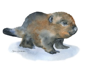 Watercolor Baby Beaver Painting - 7 x 5 - Giclee Print - Nursery Art - Woodland Animal