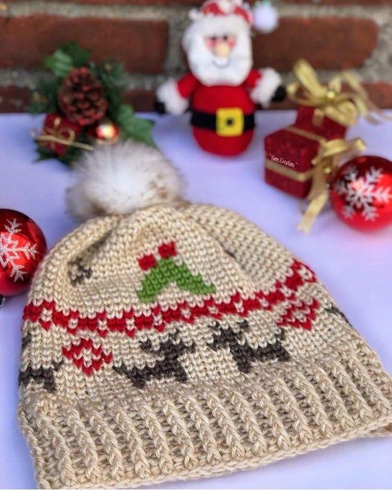 Mistletoe Kisses Beanie PDF DIGITAL DOWNLOAD Crochet pattern