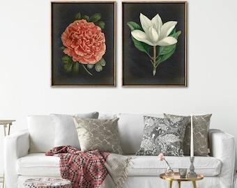 BOTANICAL Print SET of 2, Flowers Poster, Peony, Magnolia, Antique Botanical Posters, Vintage Flowers, Botany Prints, Botanical Painting