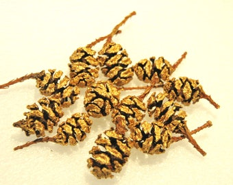 30 Golden redwood cones for craft,home decor,Floral,Wreath. 30 cones
