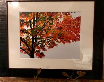 16x20 FRAMED ART- Fall into the Moment