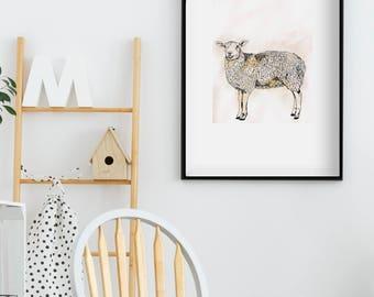 A3 Sheep Print