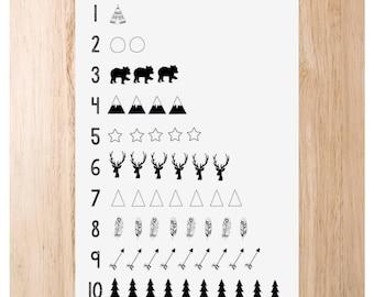 Wild Numbers Educational Print
