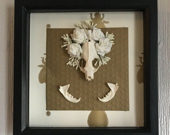 White and gold mink skull decorative shadow frame