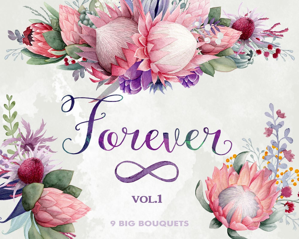 Flower bouquets clipart forever king protea gumtree zoom izmirmasajfo Images