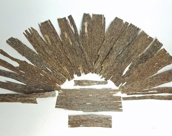 Grade AA Plantation Viet Agarwood, High Grade Resinous Oud Wood, 0.5mm Thick Sheets of Aquilaria crassna, Sustainable Aloeswood, Oudh