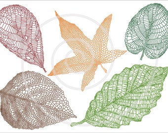 Autumn leaves, digital clip art, skeleton leaf silhouette, clipart set, scrapbooking, fall home decor, vector, EPS, PNG, instant download