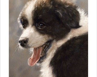 Border Collie Puppy Dog Portrait by award winning artist JOHN SILVER. Personally signed A4 or A3 size Print. BC007SP