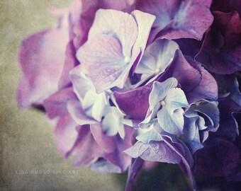 Purple Nature Print or Canvas Art, Purple Hydrangea Print, Dramatic Purple Flower Picture, Purple Bedroom Decor, Lilac, Violet.