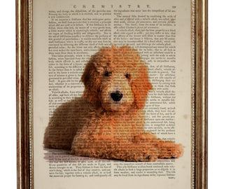 Goldendoodle Art, Goldendoodle Gift, Goldendoodle Dog Art Print Upcycled Dictionary Book page, Gift For Dog Lover