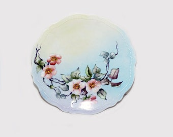 Antique OEG Royal Austria Hand Painted Plate -  160