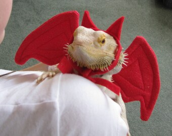 Devil Costume for Bearded Dragons! One size, fits most