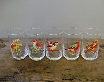 Vintage ,Hungarian, drinking set,5 pcs glasses,bird decor