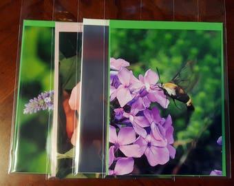 Spring Has Sprung - Notecard Set