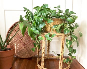 Vintage wicker bamboo side table / Round rattan plant stand / Bohemian Decor