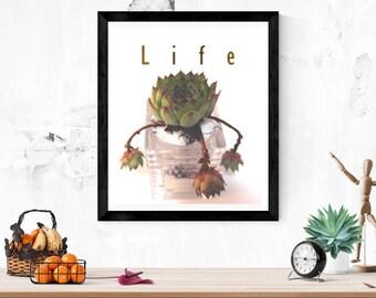 succulent, life , quotes, life quotes, succulent life printables