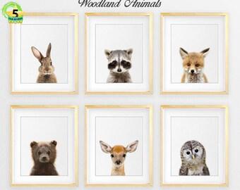 Woodland Nursery Decor, Baby Animals Set 6 Bunny Rabbit Fox Raccoon Owl Deer, Nursery Prints Modern Woodland Animals Art Kids Room Printable