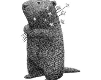 Woodchuck Art - groundhog print - marmot illustration - black and white 4x6 print of pencil drawing